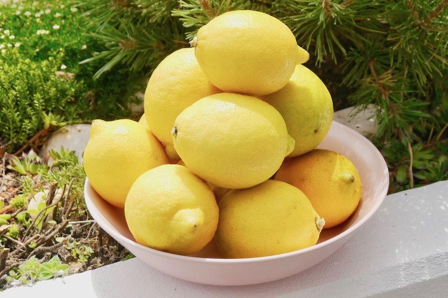 Lemons-o